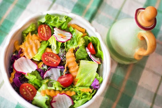 Vegetarijanska ishrana prednosti i mane